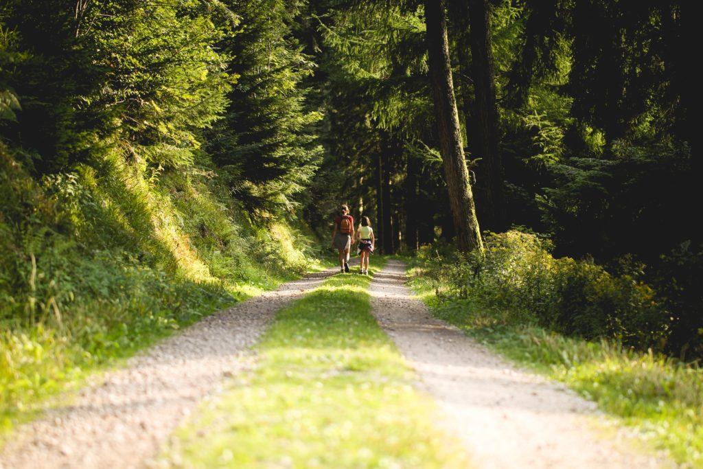 6 Tages Pauschale – Urlaub im Südschwarzwald